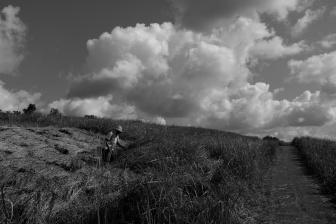 Campuhan Ridge Ubud - Bali Street Photographer