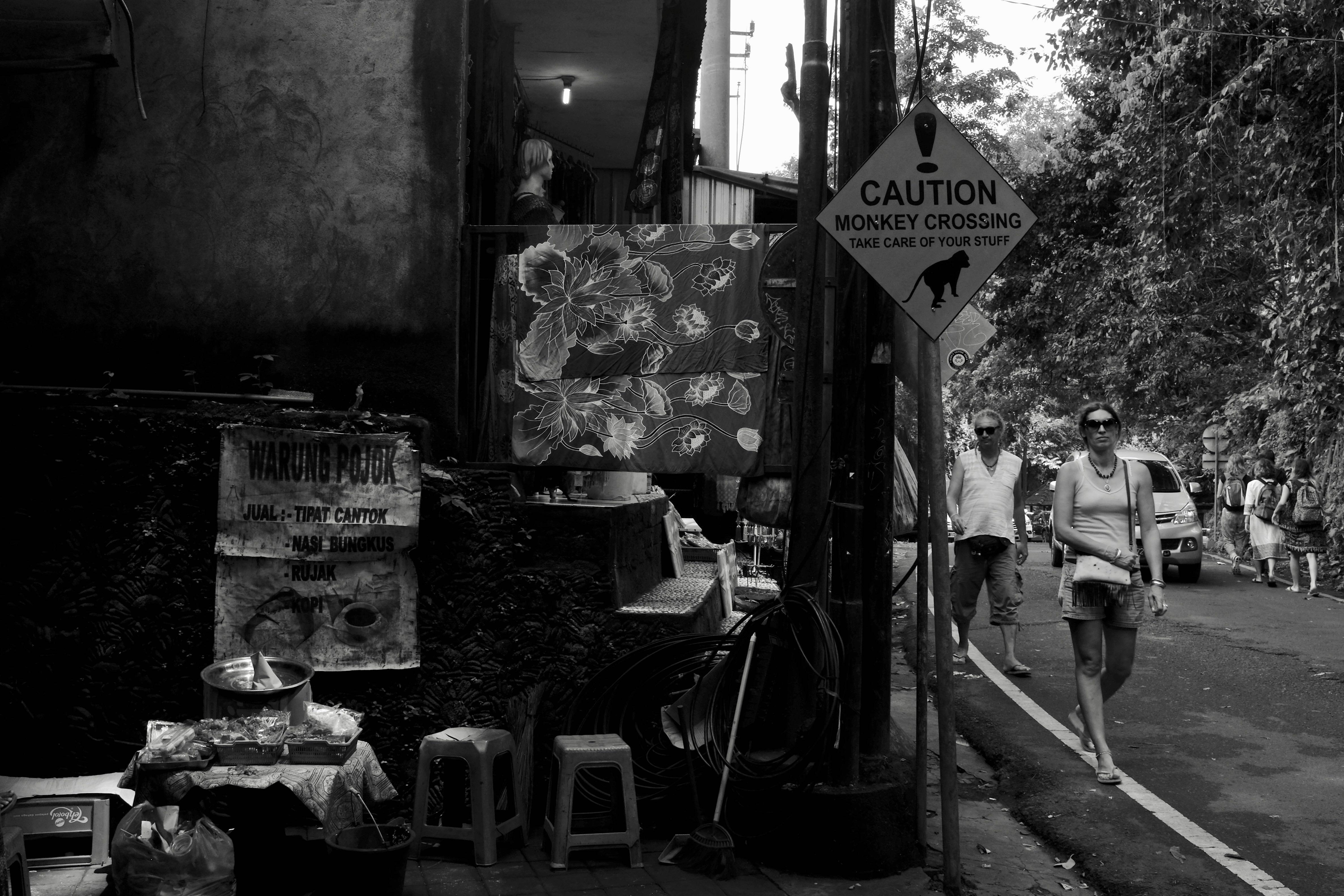 Sacred Monkey Forest - Bali Street Photographer