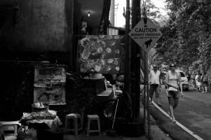 Sacred Monkey Forest - Bali Street Photographer