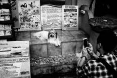 An Instagram Moment on Jalan Goutama Ubud Bali - Bali Street Photographer Tour