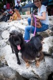 Hope & new fam in Sanur shortly after we decided to keep her.