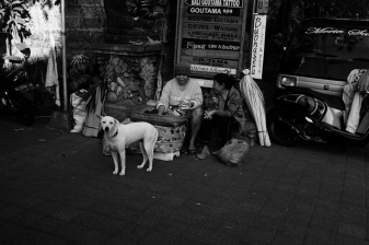 Bali Street Dog of Ubud by Bali Street Photographer