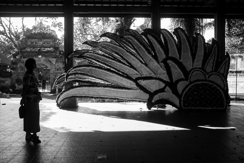 Artistic Street Photography - Ubud Bali April 2019 - Bali Street Photographer