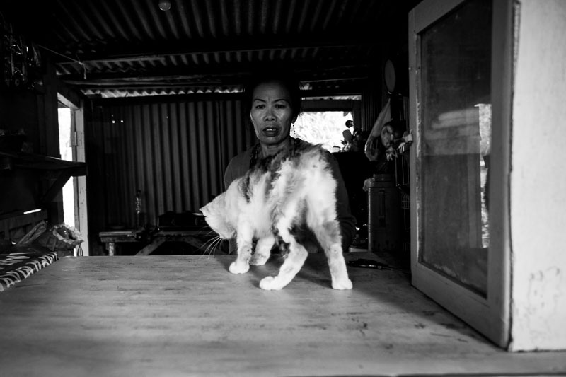 Kitty cats with a woman at a warung in Surabaya - Bali Street Photographer August 2019