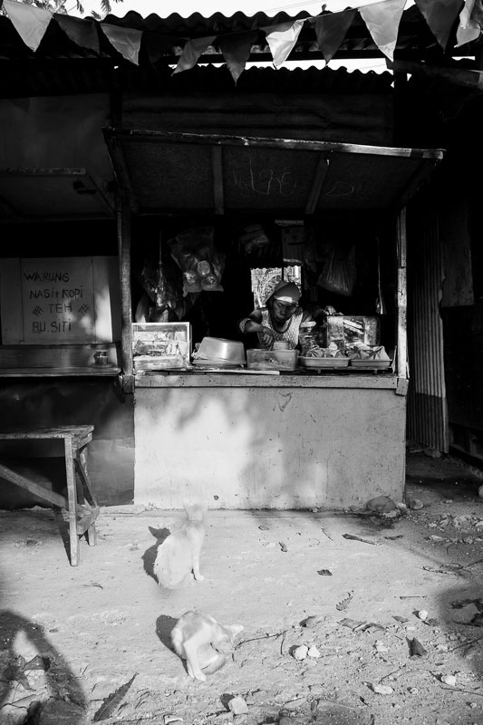 Kitty cats waiting for scraps at a warung in Surabaya - Bali Street Photographer August 2019